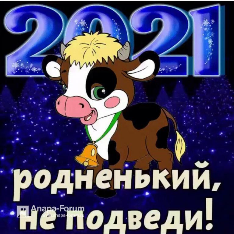IMG-20201231-WA0002.jpg