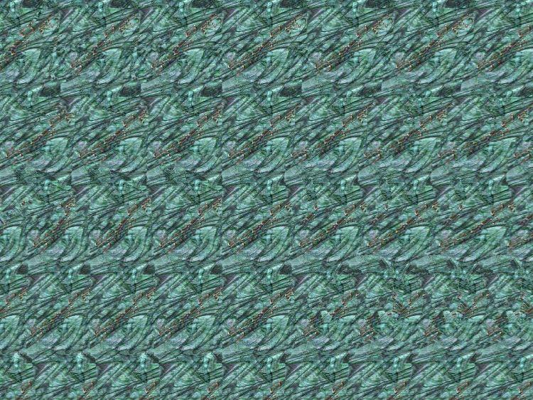 дельфинарий.jpg